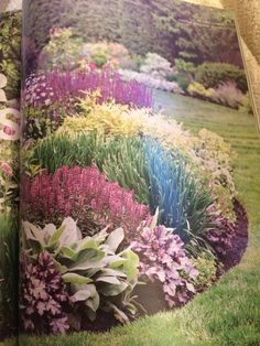 Front entry: salvia, lambs ears (green & soft) plum pudding heuchera (already there), allium summer beauty (spiky green), http://www.bhg.com/dyn/dyn/servlet/securePdf.dyn?file=/content/dam/bhg/PDFs/secure/Garden_PDFs/Borders-Download.pdf&regSource0808&isCQPage=true