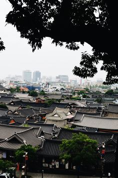 Hanok Rooftops (Jeonju, South Korea)
