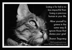 No One's Grief is Worse or More Justified... - Sharon Tregoning