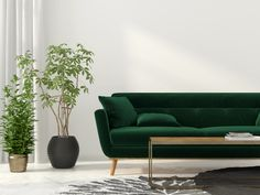 lovely rug placement living room and green modern sofa and charcoal and ivory rug in the living room 38 rug positioning living room Living Room Style, Green Sofa, Living Room Green, Green Couch, Rugs In Living Room, Trending Decor, Green Couch Living Room, Living Room Rug Placement, Green Furniture