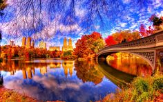 Man Made Central Park Reflection Pond Bridge Tree Fall Foliage New York Wallpaper Central Park, New York Central, New York Wallpaper, 1080p Wallpaper, Beautiful Places, Beautiful Pictures, Beautiful Gorgeous, Amazing Photos, Autumn In New York