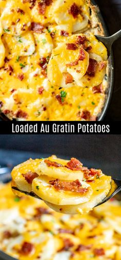 This Loaded Au Gratin Potatoes recipe is a cheesy, creamy au gratin potatoes recipe filled with sour cream, cheddar cheese, and bacon. Bacon Cheese Potatoes, Creamed Potatoes, Potatoes Au Gratin, Augratin Potatoes Recipe, Potatoe Gratin, Gratin Dish, Scalloped Potatoes With Cream, Sour Cream Potatoes, Scalloped Potato Recipes