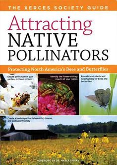 """""""Attracting Native Pollinators"""" shows how to encourage the activity of pollinators other than honeybees, which are on decline in North America. You'll find comprehensive information on every kind of pollinator, instructions for building nesting structures and an extensive list of resources. Read an excerpt from this book on how to attract pollinating insects to your garden."""