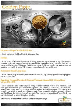 turmeric golden paste - Doug English - Turmeric Life This is the Number One Golden Paste (GP) recipe that has been tried and tested by thousands of TUG users across the globe.  This recipe may be used for humans as well as animals. http://www.ebay.com/itm/Curcumin-Blend-60-Count-/322482882728