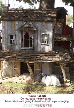 Rustic rabbit house, truly an inspiration! Pass me my banjo, I think the rabbits are going to break into song.