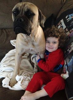 My 3 year old son with our precious 1 year old bull mastiff Zoe who was a rescue and unfortunately we lost her a year after adopting her to kidney disease..