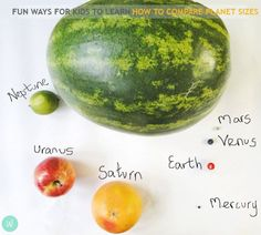 Our Solar System solar system fruit wild about here - Fun ways for kids to learn how to compare planet sizes in our solar system. Kids then can understand the size and scale of earth compared to other planets. Solar System To Scale, Space Solar System, Solar System Planets, Our Solar System, Solar System Model Project, Earth And Space Science, Earth From Space, Science For Kids, Space Activities For Kids