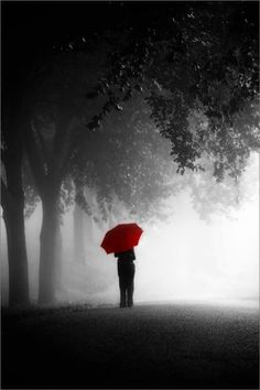 Red Umbrella by Carl Smorenburg - Photo 5172846 / Umbrella Photography, Splash Photography, Black And White Photography, Umbrella Art, Under My Umbrella, Color Splash, Color Pop, Red Color, Red Brolly
