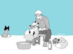 Haikyuu Kageyama, Haikyuu Funny, Haikyuu Fanart, Haikyuu Anime, Anime Art Girl, Hot Anime Boy, Anime Guys, Haikyuu Volleyball, Familia Anime