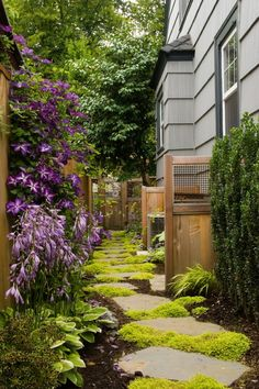 I want a side yard that looks like this...