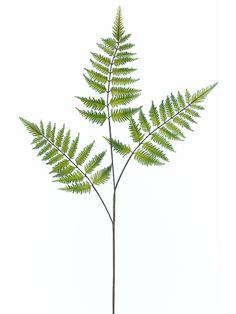 $3.29 Green Forest Fern Spray | Silk Flowers & Greenery | Afloral.com
