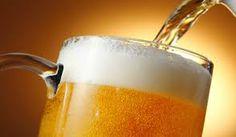 Folha certa : Cerveja, de milho transgênico