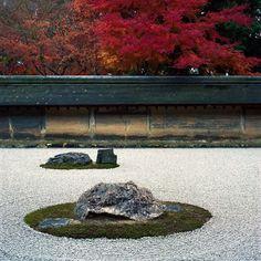Autumn Serenity #autumn #serene #traquil #kyoto #ryoanji #zengarden #momiji #maple #Hasselblad #Kodak #Portra400 #京都 #龍安寺 #紅葉