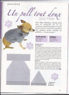 tricoter habit pour chien