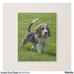 Shop Beagle Dog Puppy Jigsaw Puzzle created by hellocute. Dog Lover Gifts, Dog Lovers, Beagle Dog Puppy, Make Your Own Puzzle, Custom Gift Boxes, Animal Skulls, High Quality Images, Mammals, Dogs And Puppies