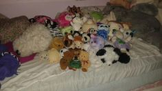 Can u find thr real animal.  If u can thing u found the real animal repin this