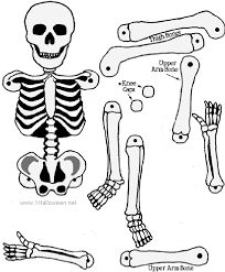 SKELETON CRAFT we used for science unit on human body/art project for Halloween party.the kids loved Graders. Holidays Halloween, Halloween Crafts, Holiday Crafts, Holiday Fun, Halloween Decorations, Halloween Party, Happy Halloween, Halloween Printable, Halloween Magic