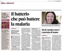 Il batterio che può battere la malaria #intervista
