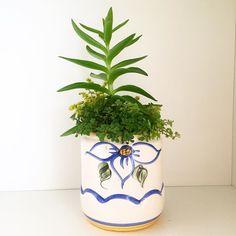 Cerâmica garimpada: exclusividade na decoração da sua casa. Preço especial. Fale com a gente  #oitominhocas #suculentas #suculovers #ceramica #decoração #garimpo