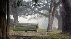 park_swing_nature_76996_1920x1080.jpg 1,920×1,080 pixels