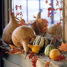 gourds, squash and bittersweet on mantle
