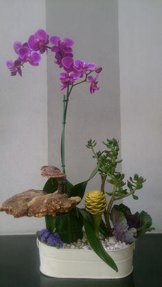 50 luz ROSA papel de morera blanca Aster Daisy Flor Boda Tarjetas En Miniatura