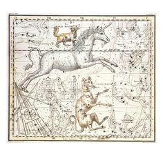 Constellations of Monoceros the Unicorn, Canis Major and Minor from A Celestial Atlas Giclee Print by A. Jamieson at Art.com