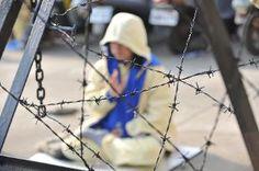Articolo di Rai News informa sugli espianti forzati in Cina e dell'audizione dell'avvocato dei diritti umani David Matas nella Commissione Diritti Umani del Senato il 19 dicembre 2013
