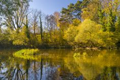 Suche Finde Entdecke  Similio, das österreichische Informationsportal  Geographie - Sachkunde - Wirtschaftskunde Portal, River, Outdoor, Communities Unit, Landscapes, Economics, Things To Do, Searching, Outdoors