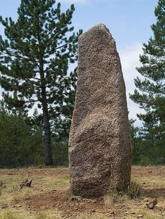 File:Cham des Bondons menhir.jpg --in alignments similar to Carnac -- see area map
