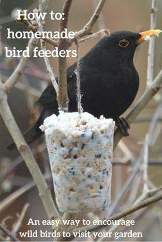 Homemade Bird Feeders Garden BirdsWoodland GardenMake Your