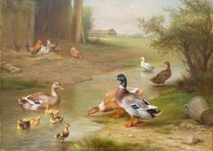 'Ducks by Stream' by English painter Edgar Hunt (1876-1955). Best known for his paintings of chickens but he also painted other birds such as ducks which were very popular during the period. Donkeys, goats and ponies were also in demand and at which he excelled. He was not a public man and rarely exhibited his work. However, he did show eleven animal scenes at the Royal Society of Artists in Birmingham and 'Feathered Friends' was exhibited at the Walker Art Gallery in Liverpool.