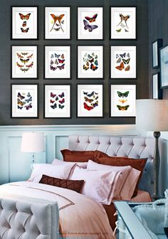 Natural History Antique Butterfly plates 1800's 8x10 set of 12 colorful butterflies collage art prints bedroom wall decor housewarming gift