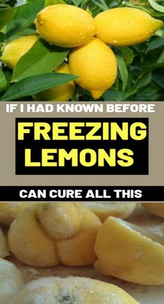 If I Had Known Before .. Freezing Lemons Can Cure All Thiswhat reviews have proven is that frozen lemons are best to use and they will present you advantages that each juicing or consuming recent fruits will not. Health And Fitness Tips, Health Tips, Health And Wellness, Health Care, Fitness Plan, Women's Health, Workout Fitness, Fitness Motivation, Natural Remedies For Uti