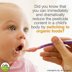 Babies, toddlers and kids are more vulnerable than adults to pesticide exposure. Young digestive tracts absorb toxins more readily than adults', and young kidneys don't detoxify as efficiently as adult kidneys. As a result, toxins circulate longer in babies' bodies, boosting exposure to four times that of adults. http://www.onlyorganic.org/blog-post-11/ #HealthyChild #OrganicFestival