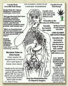 medical marijuana: medical boon or social bong essay Report shows how billionaires and marijuana legalizers manipulated the ballot initiative process, outspent the people who opposed marijuana and convinced voters that marijuana is medicine, even while most of the scientific and medical communities say marijuana.