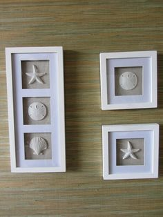 1000 Images About Seashell Shadow Box Ideas On Pinterest