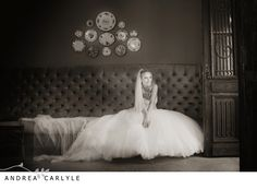 Andrea Carlyle, Morrells wedding Ever After, Brides, Couples, Wedding Dresses, Happy, Photography, The Vow, Fotografie, Bridal Dresses