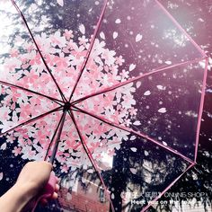 🌸Sakura Umbrella🌸 What color for you? Fancy Umbrella, Transparent Umbrella, Bubble Umbrella, Clear Umbrella, Aesthetic Photo, Pink Aesthetic, Aesthetic Pictures, Rain Photography, Love Rain