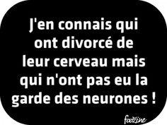 divorcé du cerveau...
