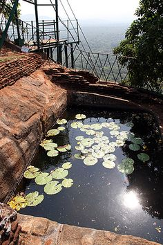 Pond, Lion's Rock, Sigiriya, Central Province, Sri Lanka (www.secretlanka.com)