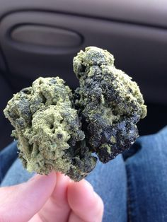dank nugs infused with hash, sprayed with keif. stonermotivation.com