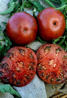 Black Krim Tomatoes growing info