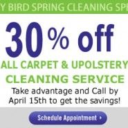 Great deal! I was babysitting my nieces the other day and they spilled their Hawaiian Punch all over the tan carpet. No matter what I do, I can't get the stain out myself. Time to call the carpet cleaning guys!