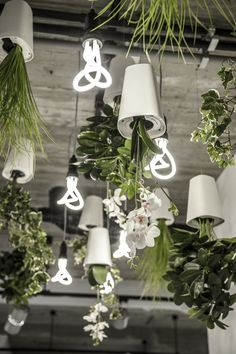 Hanging plants amongst hanging LEDs. Design: Nu interieur|ontwerp Photography: Andrew Walkinshaw