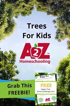 Learn how to celebrate trees on Arbor Day AND every day with these Arbor Day activities, lesson plans, and our FREE Happy Tree Picture Scavenger Hunt. Fun Fall Activities, Science Activities, Homeschool Blogs, Homeschooling, Uses Of Trees, Picture Scavenger Hunts, Trees For Kids, Weird Trees, Tree Study