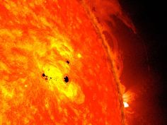 NASA Sees Monster Sunspot Growing Fast, Solar Storms Possible - The bottom two black spots on the sun, known as sunspots, appeared quickly over the course of Feb. 19-20, 2013. These two sunspots are part of the same system and are over six Earths across.