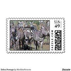Zebra Postage #postage #stamps #Zebra #striped