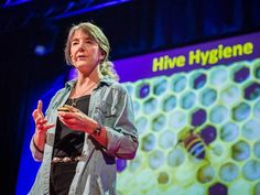 Marla Spivak: Why bees are disappearing | Really important TED TALK!