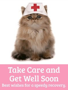 Nurse Cat Get Well Card: If you know someone who is feeling under the weather, send them this Get Well card to let them know you are thinking of them during their sickness.   Laughter is the best medicine, so send a Get Well card that will cheer them up - like this Nurse Cat Get Well card! The silly picture will make them chuckle and the sweet message will let them know you care!